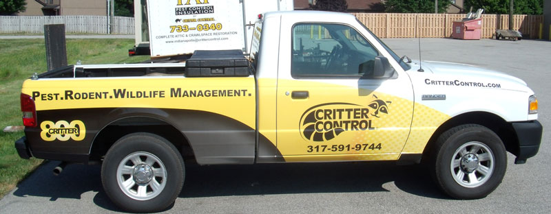business truck wrap, critter control truck, full vehicle truck wrap, pest truck wrap,